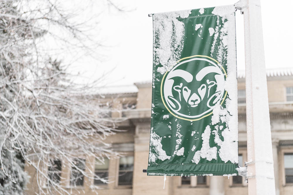CSU Ram Head Flag covered in snow