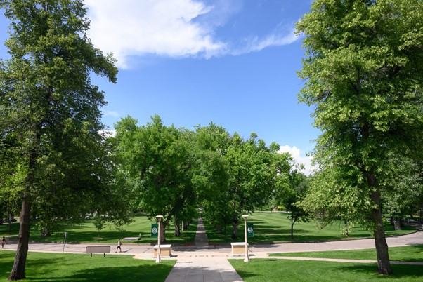 The Oval, from the perspective of the admin building, in the summer time